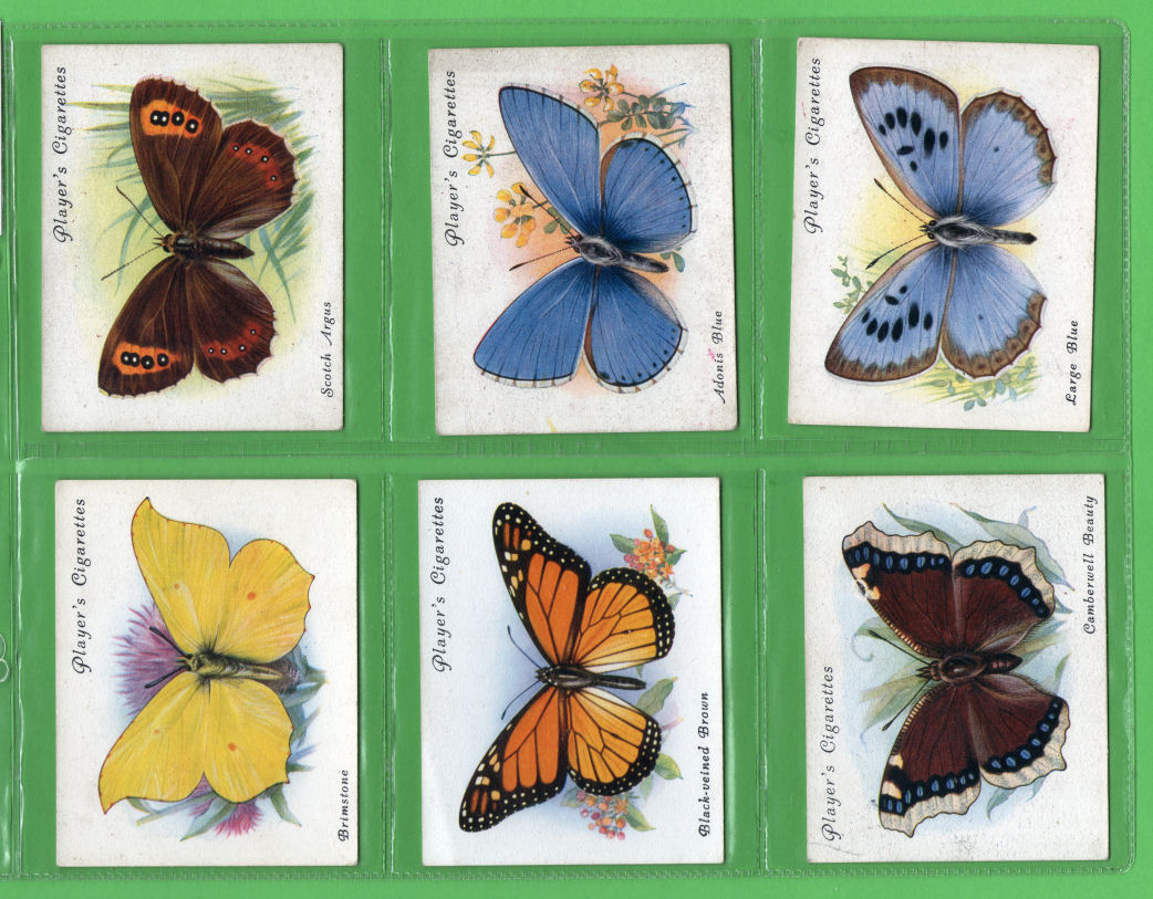 Collectable Tobacco Cards Cigarette Cards Butterflies 1934 Set